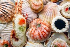 Delicious fresh specialties of shellfish. A delicious fresh specialties of shellfish stock image