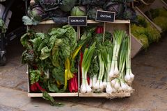 Fresh vegetables for sale at a street market. Delicious fresh vegetables for sale at a street market royalty free stock photo