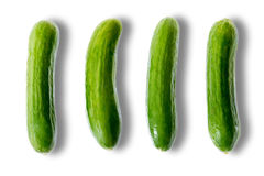 Delicious fresh whole mini cucumbers Stock Images