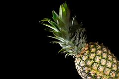 Delicious fresh yellow pineapple tropical fruit on black background.  Stock Photo