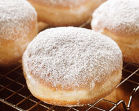 Delicious freshly baked cream donut Stock Images