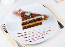 Delicious freshly baked layered dessert Stock Images