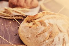 Delicious freshly bakery products and spikelets of wheat on wooden background. Close-up photo of a freshly baked bread products royalty free stock images