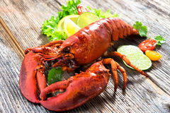 A delicious freshly boiled lobster Royalty Free Stock Image