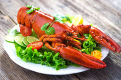A delicious freshly boiled lobster Stock Photos