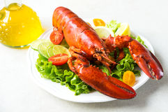 A delicious freshly boiled lobster Royalty Free Stock Images