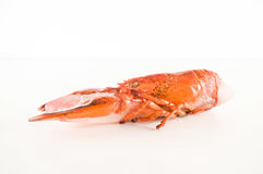 Delicious freshly steamed lobster Stock Image