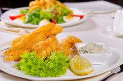 Delicious fried fish with tartare sauce Stock Image