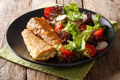 Delicious fried hake with fresh vegetable salad close-up on a ta stock image