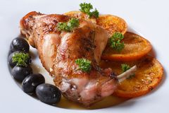 Delicious fried rabbit leg with oranges, closeup. Horizontal Stock Photography