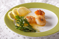 Delicious fried scallops with sauce and lemon on a plate. horizo Stock Photos