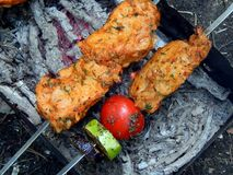 Delicious fried shish kebab with vegetables on a spit Royalty Free Stock Image
