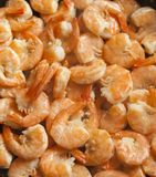 Fried shrimps with garlic stock images