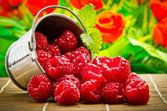 Delicious fruit berries Royalty Free Stock Photo