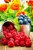 Delicious fruit berries Stock Photo
