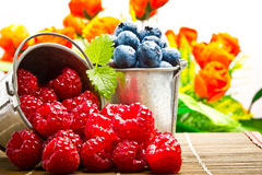 Delicious fruit berries Royalty Free Stock Photography