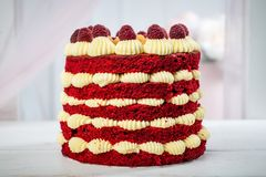 Delicious fruit cake with raspberries and cream, on a blurry background. Horizontal frame Stock Photos