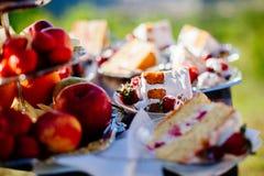 Delicious fruit cake sliced Stock Image
