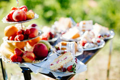 Delicious fruit cake sliced Royalty Free Stock Images