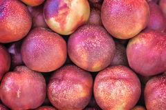 Delicious fruit-ripe nectarines. Royalty Free Stock Photography