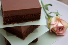 Delicious fudge pieces, chocolatey homemade chocolate cake. Tasty and delicious fudge pieces, chocolatey homemade double dark chocolate cake cacao gluten free royalty free stock photography