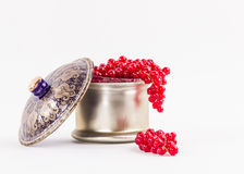 Delicious full red berries stock image