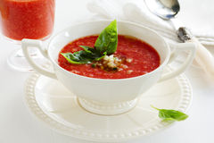 Delicious gazpacho Stock Image