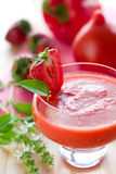 Delicious gazpacho soup Royalty Free Stock Photos