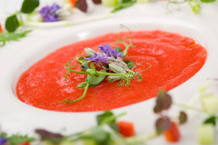 Delicious gazpacho soup Royalty Free Stock Photo