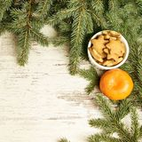 Delicious ginger biscuits. One tasty tangerine. Fir branch. NewYear.  royalty free stock photography