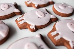 Delicious gingerbread cookies 2019 new year stock photo