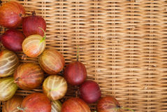 Delicious gooseberries from the garden. Fresh gooseberries on straw background Royalty Free Stock Photo