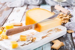 Delicious Gouda cheese Stock Images