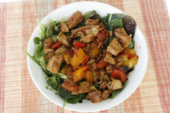 Delicious Gourmet Chicken Vegetable Salad Stock Photo