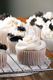Delicious Gourmet Cupcakes Royalty Free Stock Images