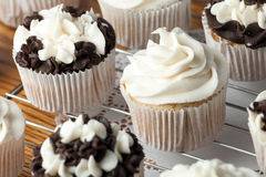 Delicious Gourmet Cupcakes Stock Images