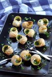 Snails with herbs butter garlic, top view Stock Photos