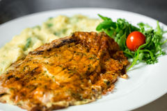 Delicious gourmet food. Close up Royalty Free Stock Photography