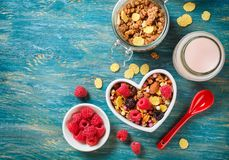 Delicious granola with berries Stock Image