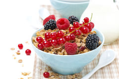 Delicious granola in the bowl with fresh berries and jug of milk Royalty Free Stock Photo