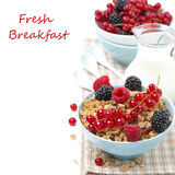 Delicious granola with fresh berries and jug of milk, isolated. On white Stock Images