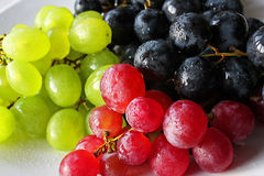 Delicious Grapes Royalty Free Stock Photography