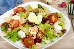 Delicious green salad with shrimps, mozzarella cheese and cherry tomatoes Royalty Free Stock Image