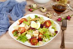 Delicious green salad with shrimps, mozzarella cheese and cherry tomatoes Stock Photography