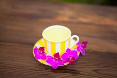 Delicious green tea in a beautiful glass bowl on table Royalty Free Stock Photo