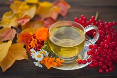 Delicious autumn tea in a beautiful glass bowl on a table Stock Photos