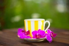 Delicious green tea in a beautiful glass bowl on table Royalty Free Stock Images