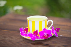 Delicious green tea in a beautiful glass bowl on table Royalty Free Stock Photography