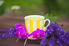 Delicious green tea in a beautiful glass bowl on table Stock Photo