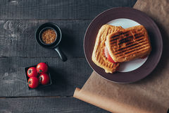 A delicious griled panini sandwich. Top view. A delicious griled panini sandwich. Top view Royalty Free Stock Photos